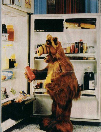 alf-fridge1