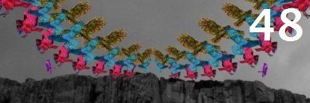 48-futurebirds-hamptons-lullaby
