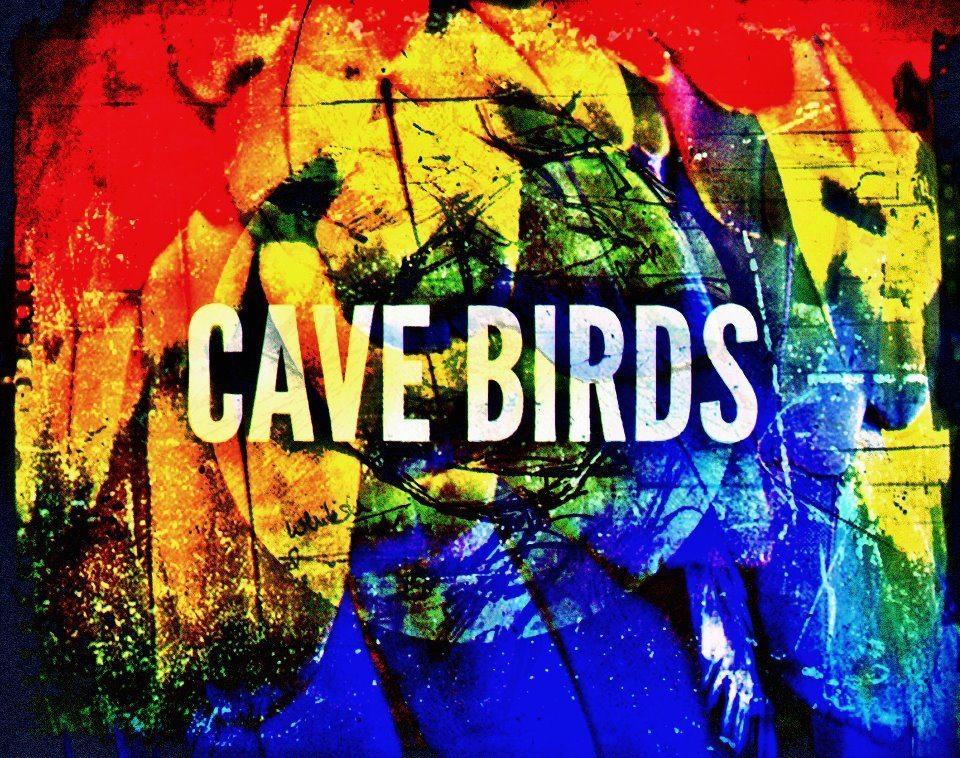 cave-birds