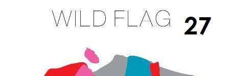 wild-flag-wild-flag
