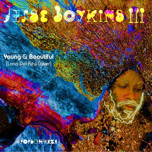 Jesse Boykins III - Young & Beautiful (Lana del Rey Cover)