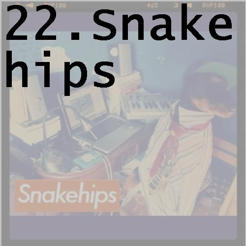 22snakehips