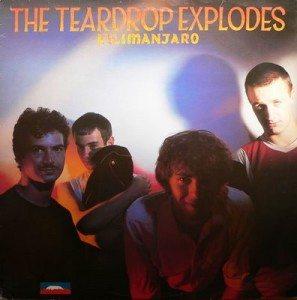 teardrop-explodes-e28094-kiliminjaro