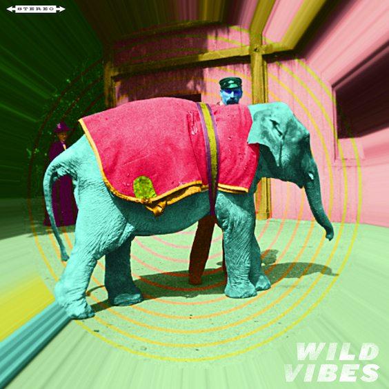 wildvibes