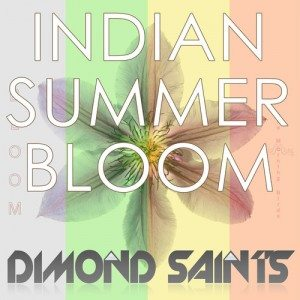 Morning Birds Indian Summer Bloom Dimond Saints Remix