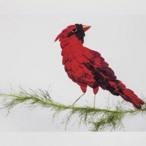 rascalredbird